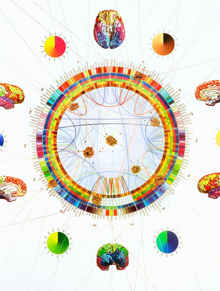 http://www.emilebarret.com/files/gimgs/87_neurosciences-02-print.jpg